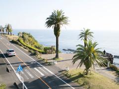 日南海岸きらめきライン